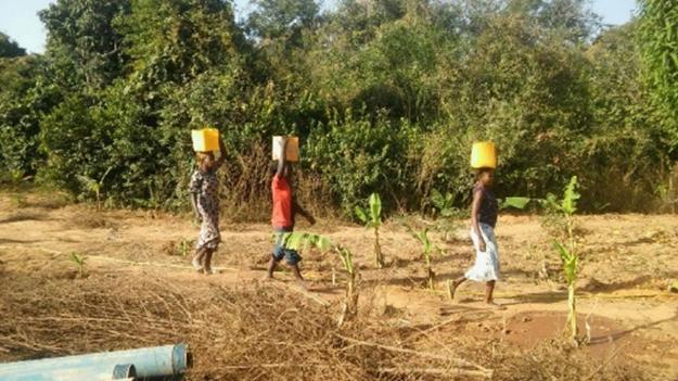 IL GIARDINO DI LUOGSI (Burkina Faso)