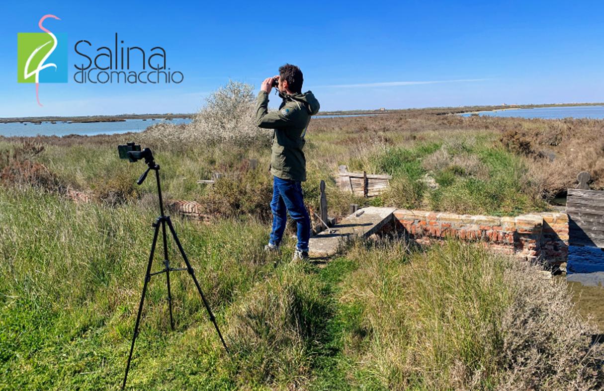 Salina live tour: visita virtuale alla Salina di Comacchio