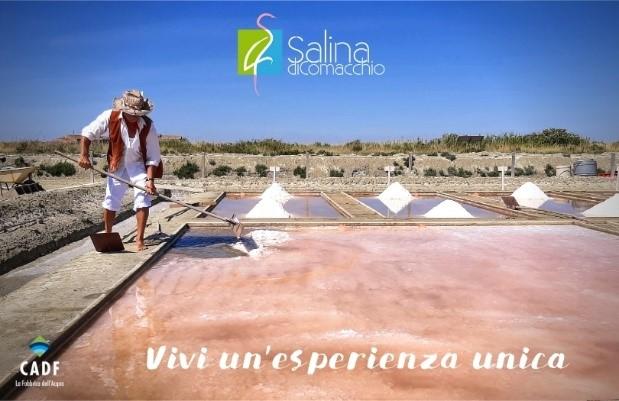 Salina di Comacchio: escursioni, concerti e fiabe